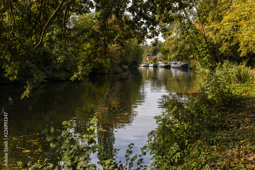 River Medway near Maidstone in Kent, taken in Autumn Wallpaper Mural