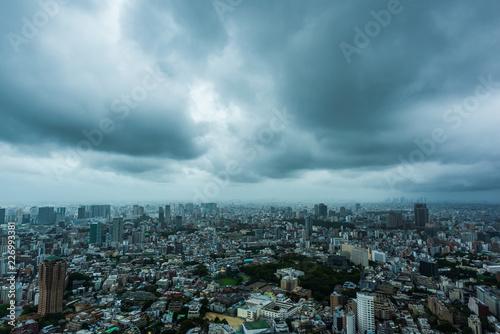 台風接近中の東京 A Cloudy Day in Tokyo Canvas Print