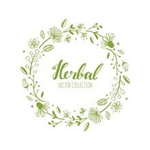 Rustic Decorative Vector Plants And Flowers Wreath 2