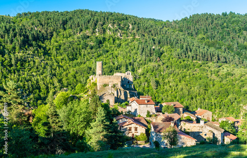 Foto op Plexiglas Historisch geb. View of Chalencon village with its castle. France