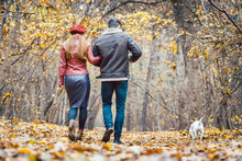 Woman And Man In The Fall Strolling With Their Dog In The Park