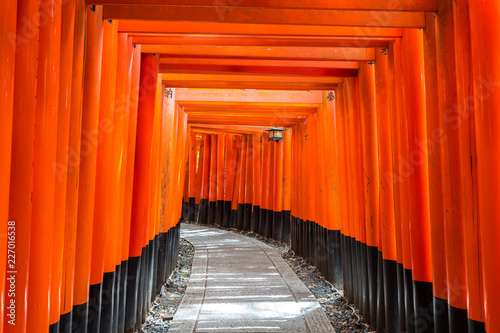 red torii gate of fushimi inari in kyoto, Japan