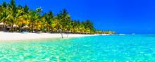 Tropical Paradise- Perfect Bea...