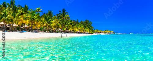 Tropical paradise- perfect beautiful white beaches of Mauritius island