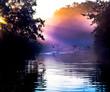 Enten auf einem kleinen Fluss im Morgennebel einer herbstlichen Landschaft