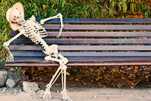 Skeleton On A Bench In Park, H...