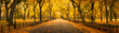 canvas print picture - Autumn panorama in Central Park, New York City, USA