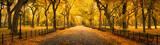 Fototapeta Nowy Jork - Autumn panorama in Central Park, New York City, USA
