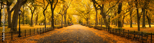 Slika na platnu Autumn panorama in Central Park, New York City, USA