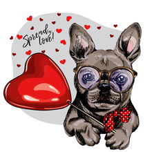 Hand Drawn French Bulldog With Heart Shape Baloon. Vector Valentine Day Greeting Card. Cute Colorful Dog Wears Glasses And Bandana. Romantic Design. Love Pet Portrait. Poster, Banner. Spread Love.