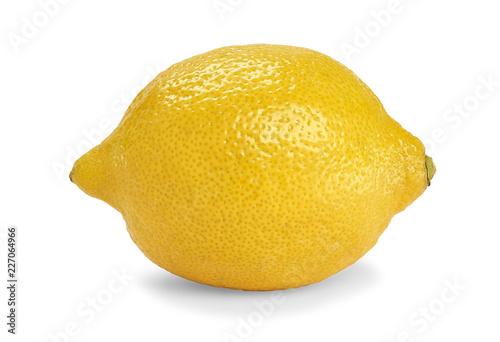 one lemon on white background