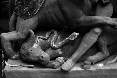 Photo Durga Puja