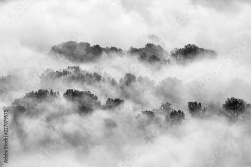 mgla-nad-lasem-wlochy