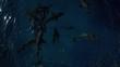Sharks thrash at ocean surface, overhead aerial