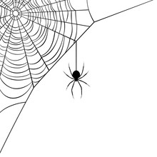 Vector Illustration Of A Corner Web/spider Design.