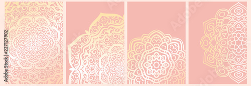In de dag Boho Stijl Set of mandala backgrounds isolated on pink. Banner, flyer, card with ornamental flowers. Vector illustration.