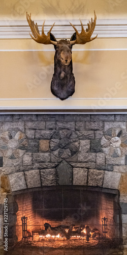 Fotografija Moose over the Fireplace