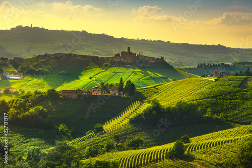 Langhe vineyards view, Castiglione Falletto and La Morra, Piedmont, Italy Europe.