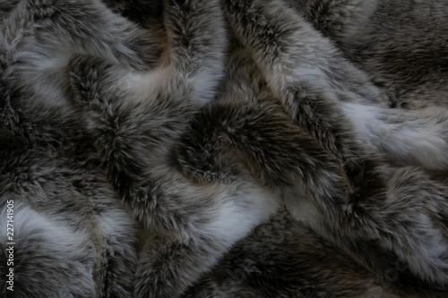 Obraz Close up of a fur blanket - fototapety do salonu