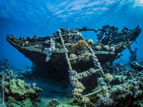 Foto op Plexiglas Schipbreuk Wrack im Roten Meer in Ägypten