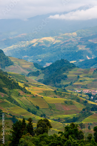 Staande foto Blauwe jeans Mu Cang Chai terraces rice fields in harvest season