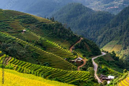Recess Fitting Rice fields Mu Cang Chai terraces rice fields in harvest season