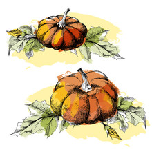 Pumpkin With Flowers And Leaves, Two Harvest Illustrations Set, Hand Drawn Sketch, Vector. All Objects Are Isolated. Watercolor Blob Imitation.