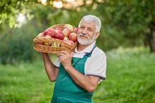 Bearded Farmer Holding Basket ...