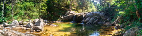 Canvas Prints Forest river Small River Among Forest in Uludag National Park