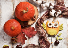 Autumn Flat Lay With Pumpkins And Owl Decor
