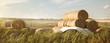 canvas print picture - Ländliche Region mit gestapelten Heuballen als Panorama