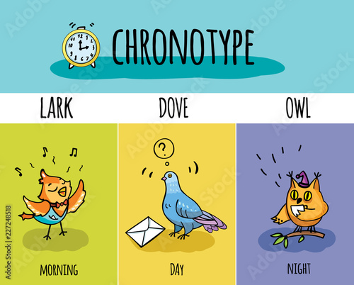 Chronotype of people Canvas-taulu
