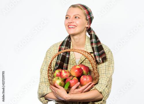 Woman gardener rustic style hold basket with apples on white background Slika na platnu