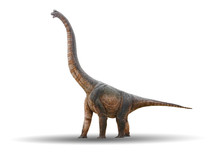 Sauropod Dinosaur Is Made Of Cement Isolated On A White Background With Clipping Path