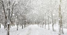 Winter Park Under The Snow. A ...