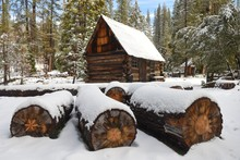 Rustic Old Cabin Surrounded By Snow In The Forest Near Yosemite