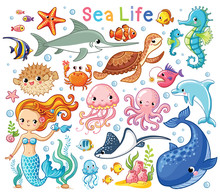 Vector Set With Sea Animals An...