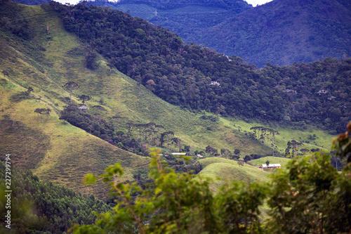 In de dag Centraal-Amerika Landen Brazilian tropical landscape
