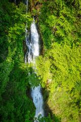 Fototapeta Wodospad Kegon falls, Nikko, Japan