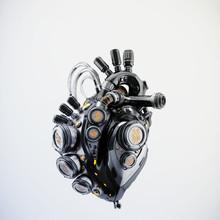 Robotic Heart