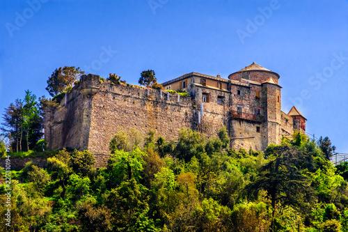 Stampa su Tela Castel Brown ancient castle hill Portofino Genoa Liguria Italy