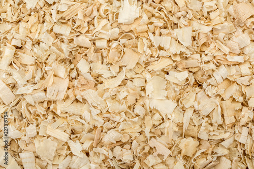Fotografia, Obraz  Seamless scobs background