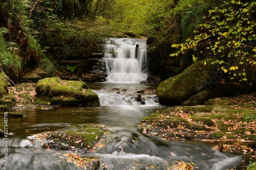 Aluminium Prints Forest river Scenic view of the gig waterfall at Watersmeet in Devon