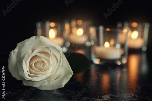Tablou Canvas White rose and blurred burning candles on table in darkness, space for text
