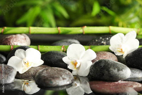 Spa stones with flowers and bamboo branches in water