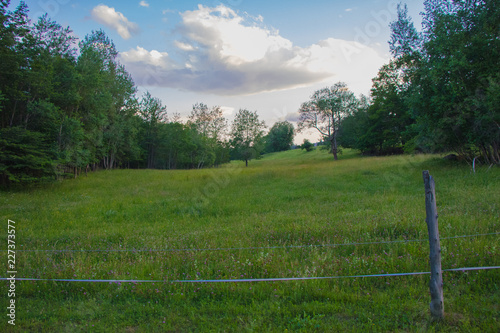 Foto op Canvas Weide, Moeras colorful fenced in field at sunset