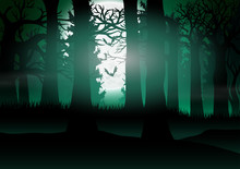 Forest View With The Background Of Full Moon Light