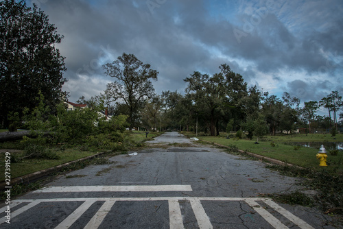 Fotografie, Obraz  Destruction from Hurricane Michael