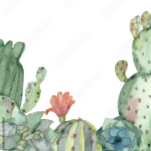akwarela-transparent-wielokolorowych-kaktusow