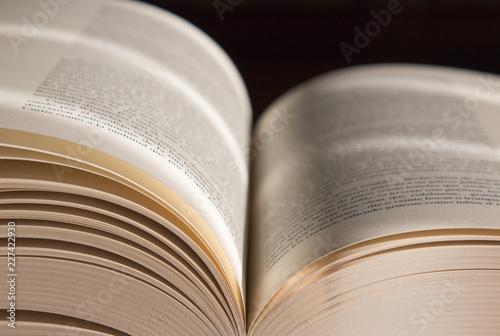 Fotografie, Obraz  Libro abierto